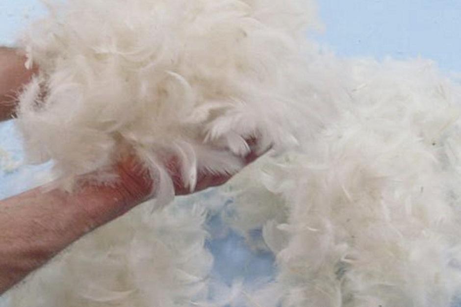 как правильно сушить пух и перья
