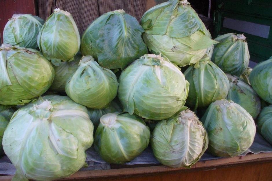 как сберечь овощи