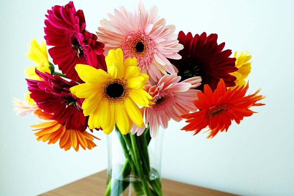 какие цветы долго стоят