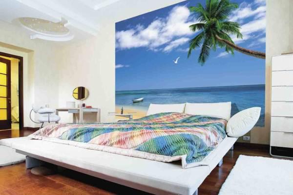 пальма на берегу океана