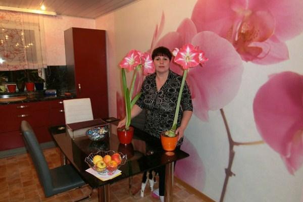 любителям орхидей