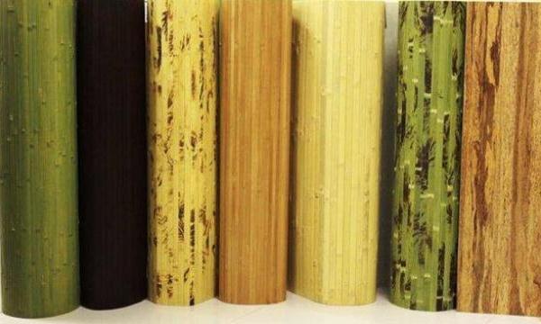фото бамбука