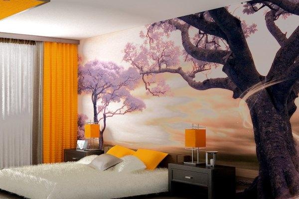 цветущее дерево сакуры