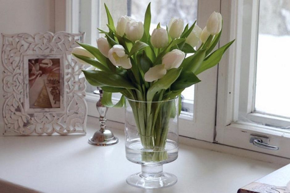 В каких условиях должны стоять тюльпаны в вазе с водой