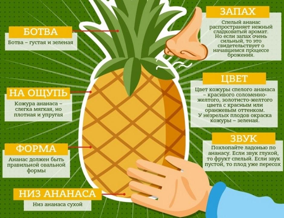 как выбрать ананас для посадки